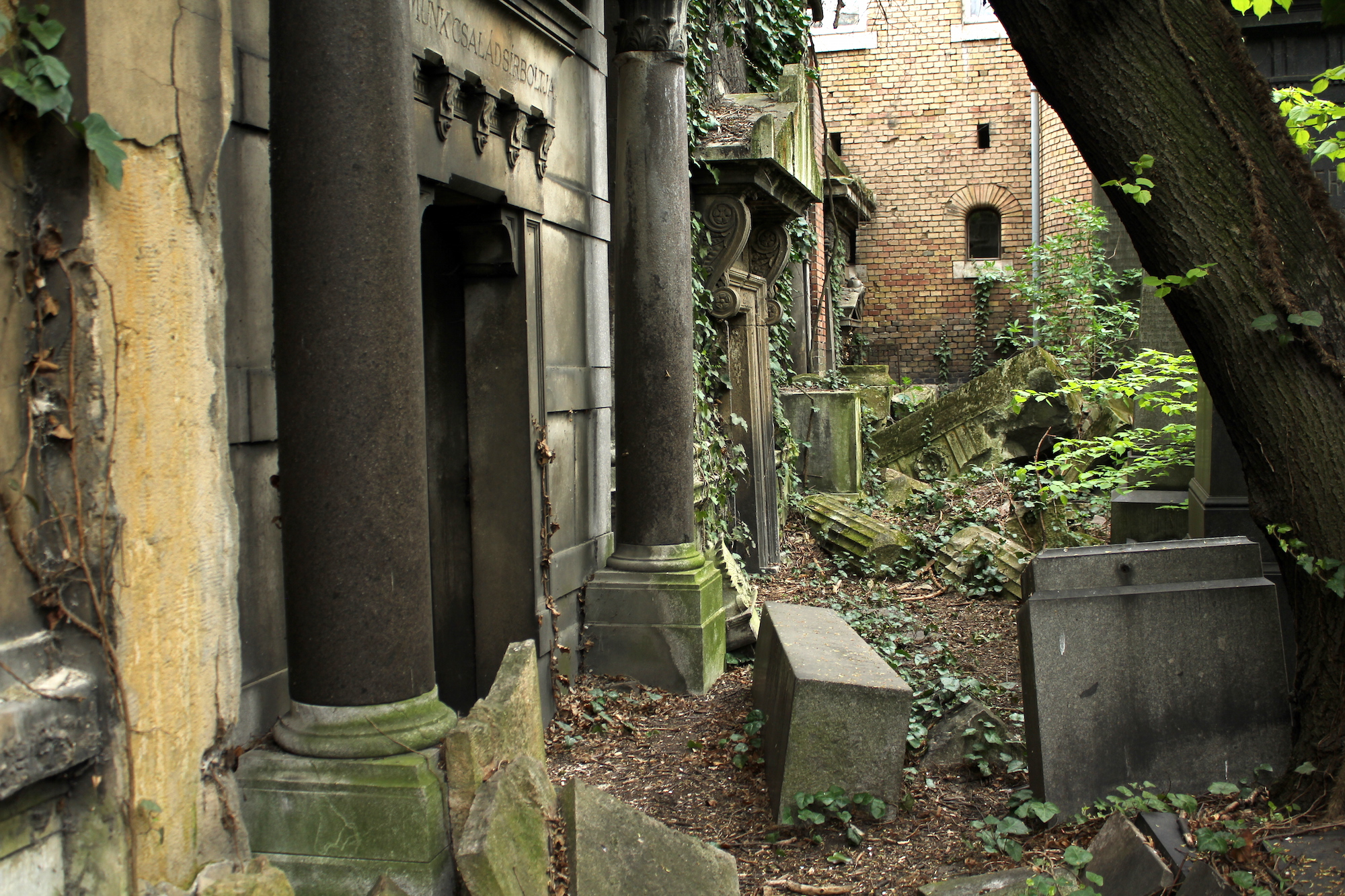 An Abandoned Jewish Cemetery Budapest 101