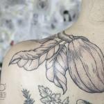 Cocoa plant - Tattoo by Dorca